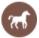 horseback riding florida